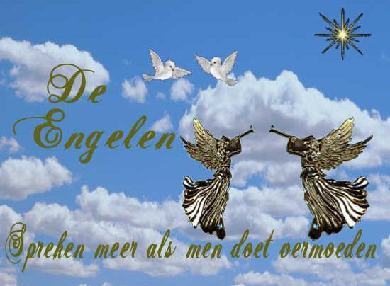 """bestaan ze echt '""""engelen"""""""